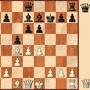 Задачи по шведским шахматам (#11)