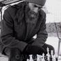 Профессия шахматиста: возможные источники дохода