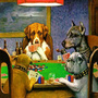 Общие правила покера