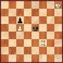 Шахматные поддавки: ладья и пешка против пешки