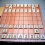 Игра самураев, или Японские шахматы сёги